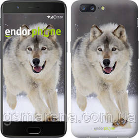 "Чехол на OnePlus 5 Бегущий волк ""826u-969-7794"""