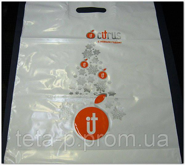 Фирменный пакет с логотипом, банан, 30*40