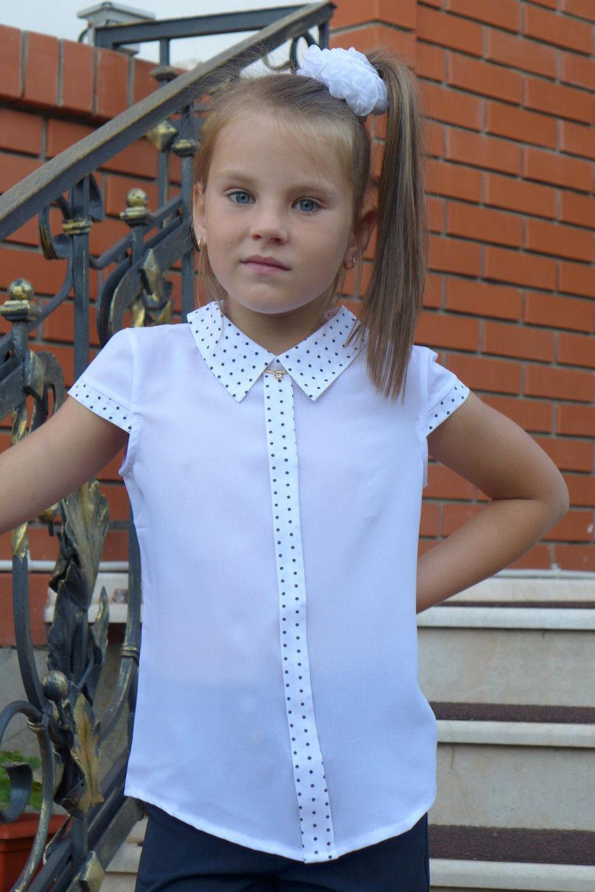 """Блузка для девочки """"планка -короткий рукав""""(отделка мелкий горошек)"""