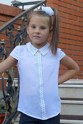 """Блузка для девочки """"планка -короткий рукав""""(отделка мелкий горошек), фото 2"""