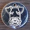 Жетон  медальон для собак и кошек