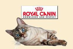 Корм для котов и кошек Royal Canin