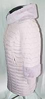 Зимнее полупальто больших размеров 48-58 на тройном синтепоне украшено мехом мутон цвета лаванда