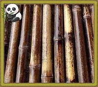 Бамбуковый ствол темный, длина 2 м, д.1.8-2см