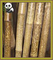 Бамбуковый ствол леопардовый (пятнистый), длина 3 м, д. 4-5 см
