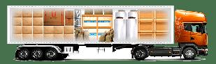 Перевезення збірних вантажів в Росію
