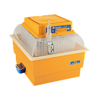 Novital Covatutto 24 Eco инкубатор с ручным переворотом яиц