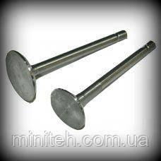 Клапан головки циліндра 175/180 (пара)
