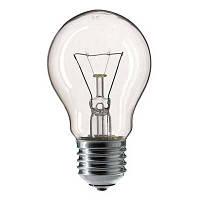 Лампа накаливания 100W E27( 100)