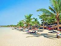 Отель 3 Palm Beach для туризма! от Exotica tours