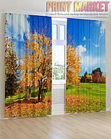Фото шторы желтые листья и деревья