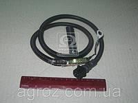 Датчик скорости МТЗ 1221/1522 (453843.001) (пр-во Беларусь) АР71.3843