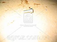 Болт ГАЗ скобы к суппорту 3102,3110,3302,2217 ч/з напр.палец (пр-во ГАЗ) 3105-3501225