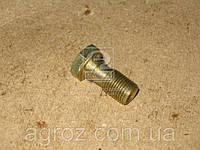 Болт ГАЗ шланга тормоза передний Волга (болт-штуцер) (пр-во ГАЗ) 3110-3506012