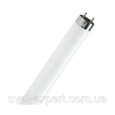 Лампа Люминисцентная PHILIPS TLD 58W/54-765  1500 мм