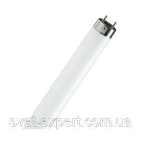 Лампа Люмінесцентна Osram L 18W/640 G13 590mm