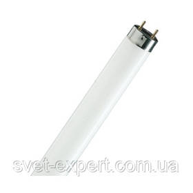Лампа Люмінесцентна Osram L 18W/765 G13 590mm