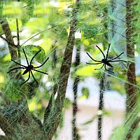 Паутина зеленая с пауками, декор на Хэллоуин