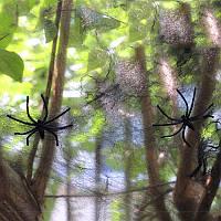 Паутина черная с пауками, декор на Хэллоуин