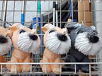 Копилки собачки-отличный подарок В ГОД СОБАКИ