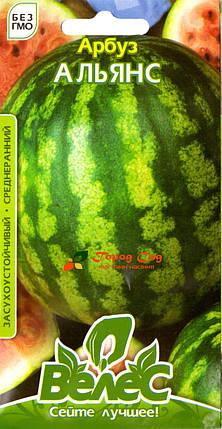 Семена арбуза Альянс 1г ТМ ВЕЛЕС, фото 2