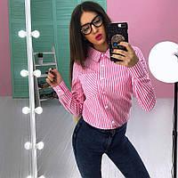 Женская стильная рубашка в полоску (3 цвета), фото 1