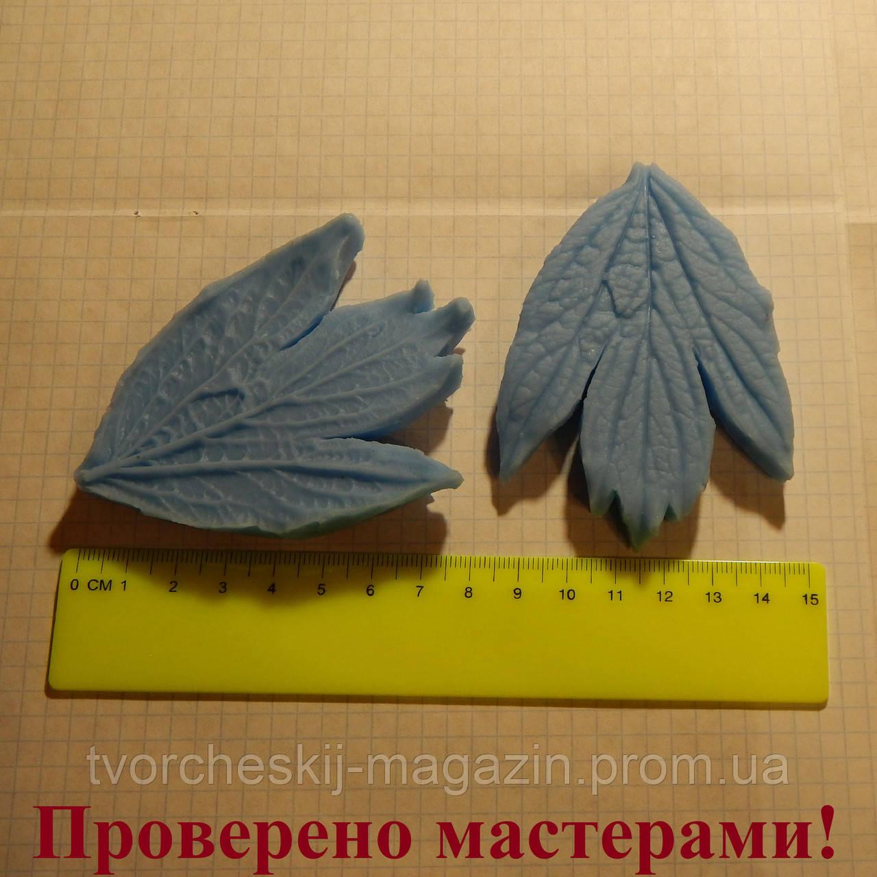 """Вайнер """"Лист пиона XL"""", 8.5х6.5 см"""