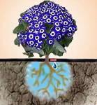 Крапельний полив рослин