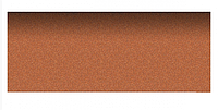 Коньково-карнизная черепица Aquaizol 250х1000 мм виски, фото 1