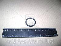 Кольцо уплотнителя РТЦ ВОЛГА-ГАЗЕЛЬ (D=32мм) (REP) (пр-во ЯзРТИ) 24-10-3501051