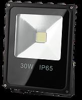 Works FL30 Прожектор LED (30W)