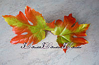 Лист клена осенний зеленый с красным двойка