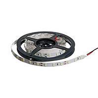 Светодиодная лента Biom Econom SMD-5630 60 LED/m 13.6W 12V IP20 (Теплый свет)