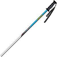 Лыжные палки Vipole Rental Alu Jr 95