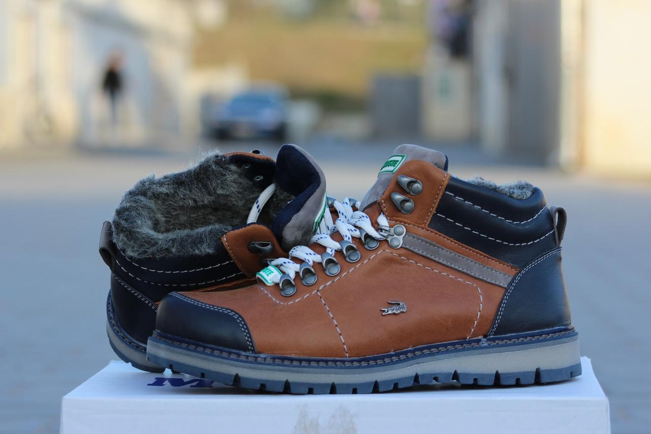Мужские Зимние Ботинки Lacoste, натуральная кожа код 3222 -  Интернет-магазин обуви