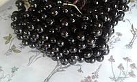 Калина глянцева (лакова) - чорна 1см