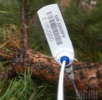 Ёлочная бирка 330 - бирки для древесины, саженцев