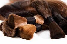 Купівля волосся в Прилуках