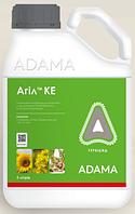 Агил 100. КЭ (5л)  послевсходовый гербицид Адама