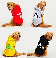 Спортивные толстовки в стиле Adidog для собак средних и крупных пород. Одежда для собак.