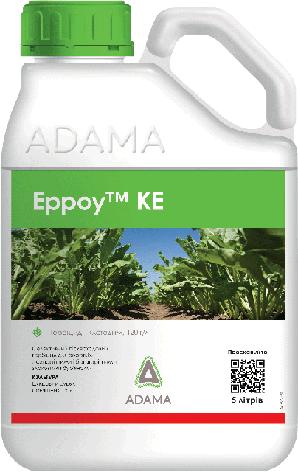 Эрроу КЭ послевсходовый гербицид Адама, фото 2