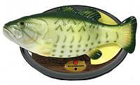 Поющая рыба «КАРП БИЛЛИ БАСС»
