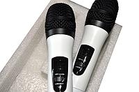 Радиомикрофоны для караоке KVG-K6