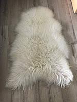 Овечья шкура, Исландская порода ОШ2