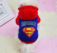 Толстовки для собак в стиле SuperMan (на флисе). Одежда для собак.