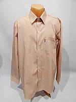 Мужская рубашка  длинным рукавом AVIS  052ДР р.50