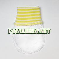 Варежки (царапки, рукавички, антицарапки) р. 56-62 для новорожденного ткань КУЛИР 100 % хлопок 3843 Желтый