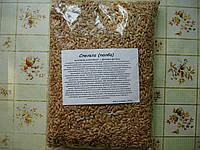 Пшеница спельта (лат. Triticum spelta) 1кг.