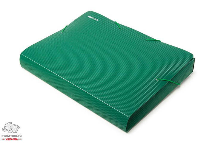 Папка-бокс на резинке Economix А4 ширина 4 см пластик цвет ассорти Арт. E31402-01,02,17,25