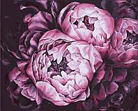 """Картина раскраска по номерам """"Королевские пионы"""" набор для рисования"""